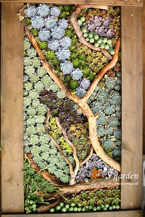 картины из живых цветов своими руками фото